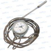 ТПГ-СК Термометр манометрический